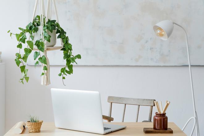 Sztuczne wiszące kwiaty do domu - pomysły dla każdego