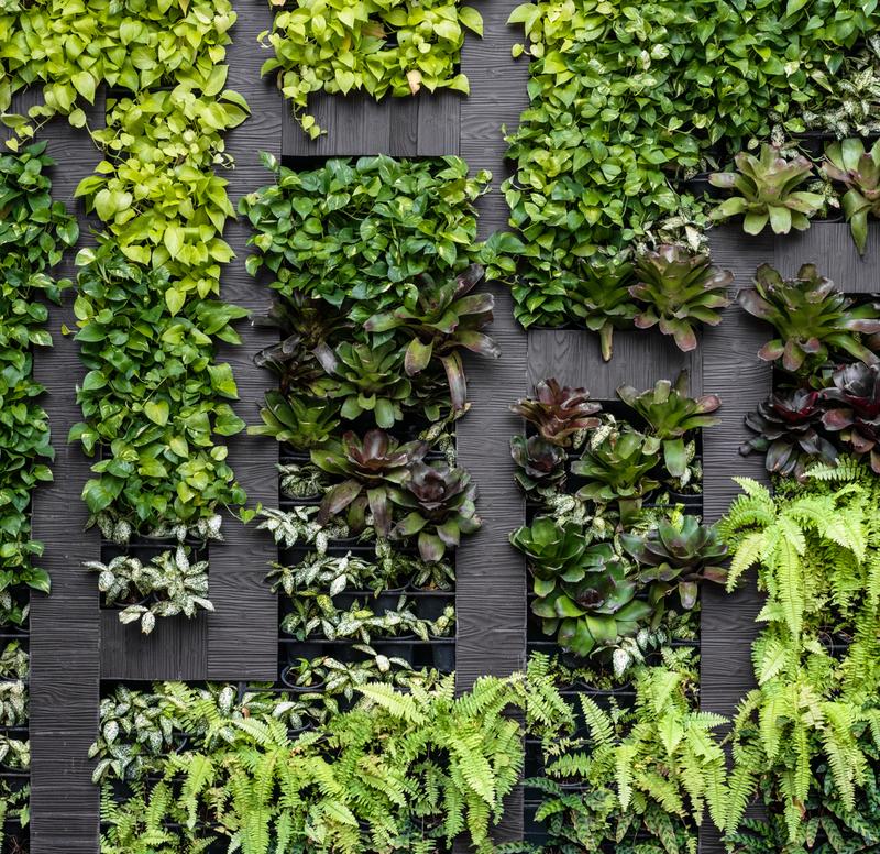 aranżacja zielonej ściany z kwiatów sztucznych