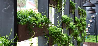 kompozycje roślinne z kwiatów sztucznych