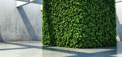 zielony element architektoniczny