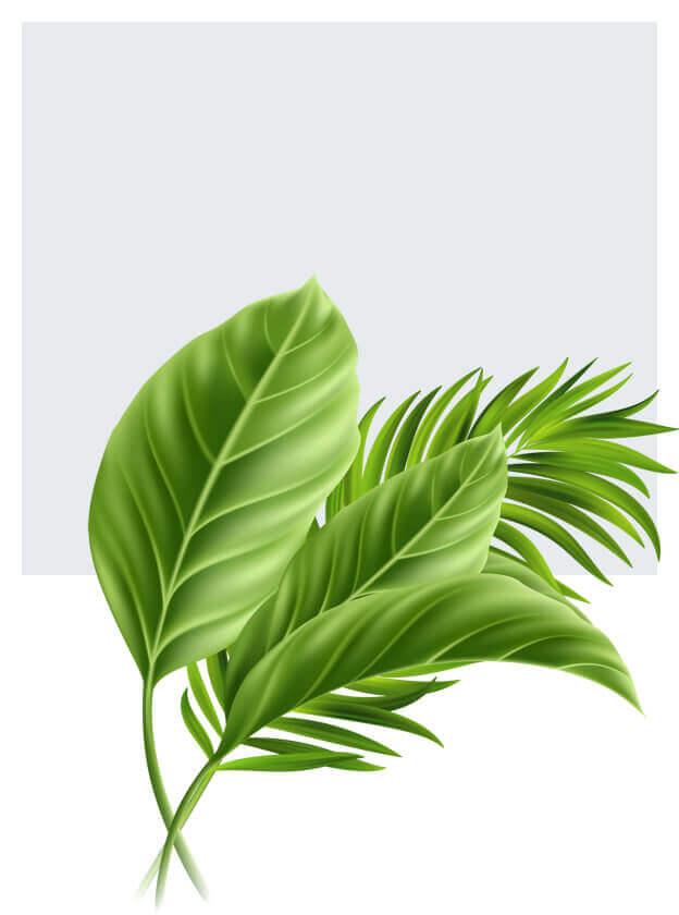 Sztuczne liście
