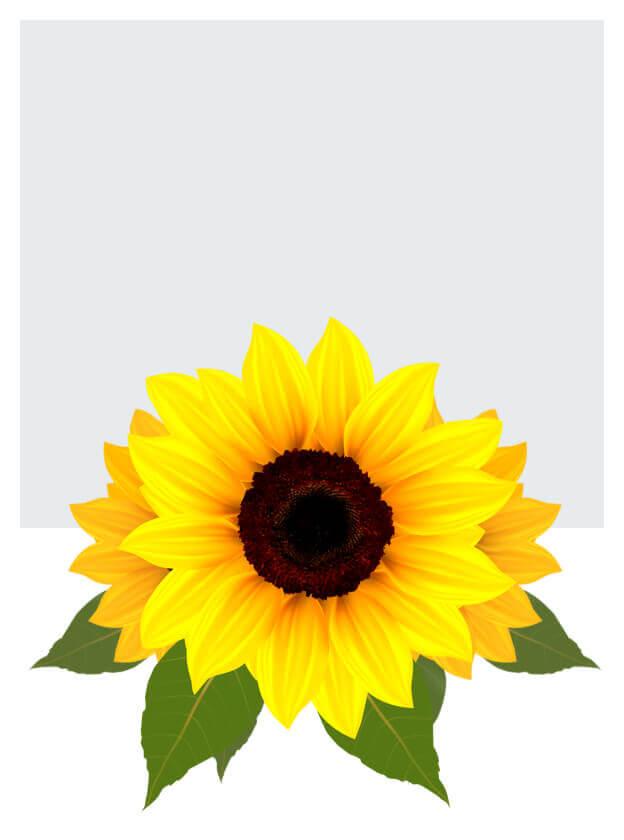 Sztuczne główki kwiatów