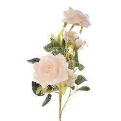 Róża ośnieżona - gałązka (GK086X)