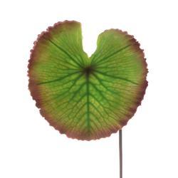 Sztuczna lilia wodna - liść gumowy (L317)