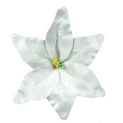 Duża lilia - główka (W144)
