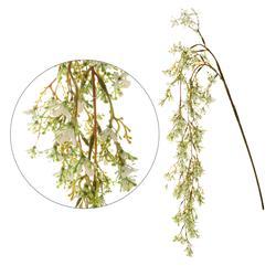 Zwis roślinny kwitnący (R127)