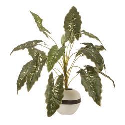 Roślina zielona - bukiet x15 (D018)