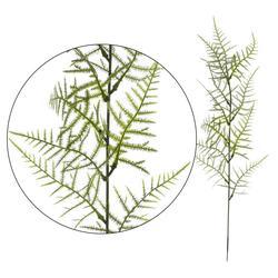 Asparagus - gałązka dekoracyjna 45 cm (L304)