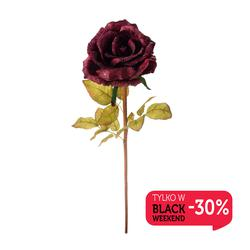 Róża - gałązka korkowa (GK044)