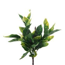 Hoja - bukiet liści (L169)