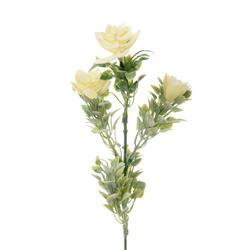 Gałązka omszała z kwiatami (L327)