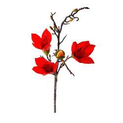Magnolia - gałązka 110 cm (GK911)