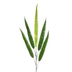 Liście egzotyczne na gałązce (L168)