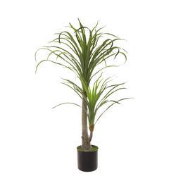 Juka - drzewko (T160)