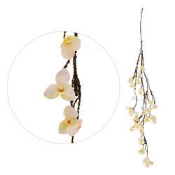 Storczyk - zwis kwiatowy (B051)
