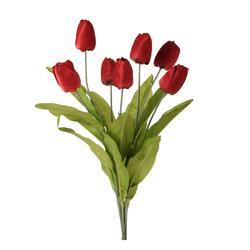 Tulipan - bukiet x7 (U268E)