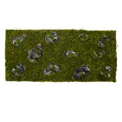 Mata z porośniętymi kamieniami (TR059)