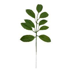Gardenia - gałązka liściasta 40 cm (L398)
