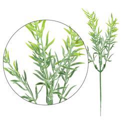 Asparagus - gałązka dekoracyjna 25 cm (L193)