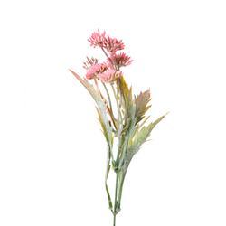 Bylina dekoracyjna kwitnąca (L084)