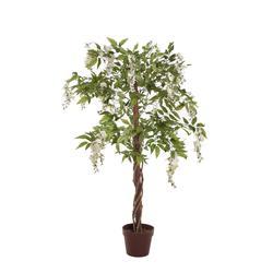 Wisteria - drzewko (T136)