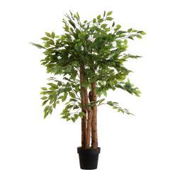 Fikus - drzewko w donicy 150 cm (T037)