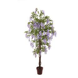 Wisteria - drzewko (T139)