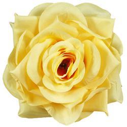 Róża Romance - główka (W701)