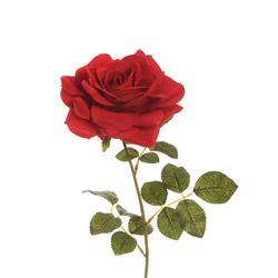 Róża - gałązka (K454)