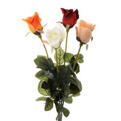 Róża micro pitch w pąku (K134)