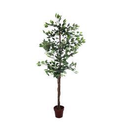 Fikus - drzewko 180 cm (T888)