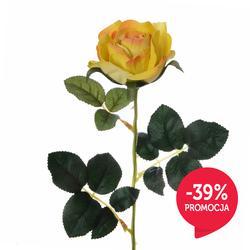 Róża - gałązka (K144)