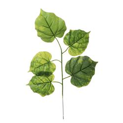 Lipa - gałązka liściasta (R001)