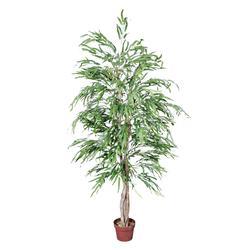 Wierzba - drzewko (T212)