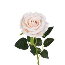 Róża welurowa - gałązka (GK013)