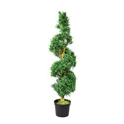 Bukszpan - drzewo w doniczce 137 cm (T144)