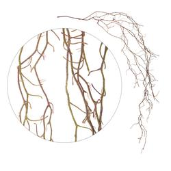 Girlanda z gałęzi (DK011)