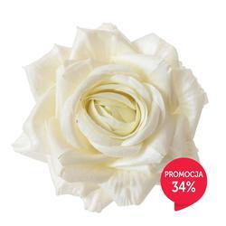 Róża-główka (W088)
