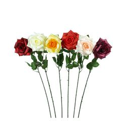 Róża - gałązka (K137)