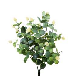 Eukaliptus - bukiet (D051)