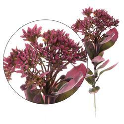 Rozchodnik - gałązka z kwiatostanem 43cm (L467)