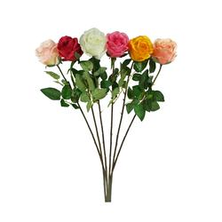 Róża - gałązka (K336)