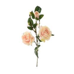 Róża - gałązka (GK011)