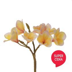 Plumeria satynowa - gałązka (GK140)