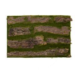 Kora drzewa - mata 30x50 cm (TR024)