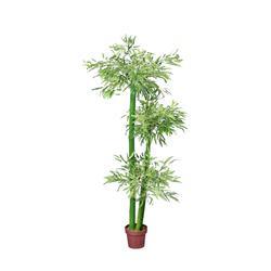 Bambus - drzewko (T201)