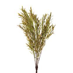 Bukiet rozmarynu zielony (R164)