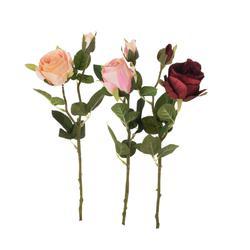 Róża - gałązka (K214)
