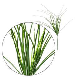 Trawa dekoracyjna - gałązka (L465)