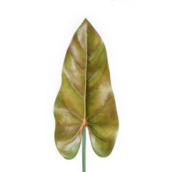 Kalia - liść satyna gumowana (L042)